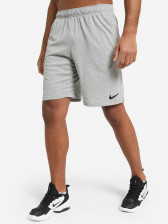 Шорты мужские Nike Dri-FIT