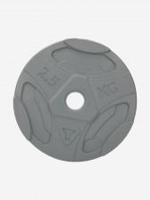 Блин Torneo в пластиковом корпусе 2,5 кг, 2020-21